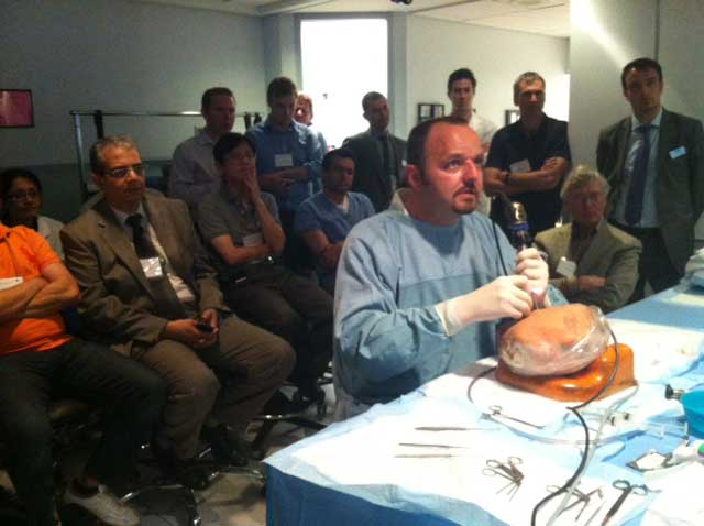 IWGEES - The International Working Group on Endoscopic Ear